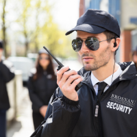 Best Security Services Companies