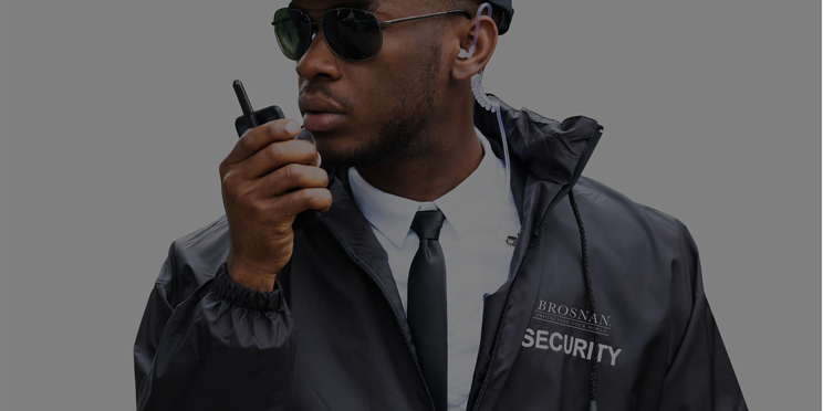 What is a Security Services Company